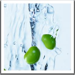 Soy Ingredient Benefits Image