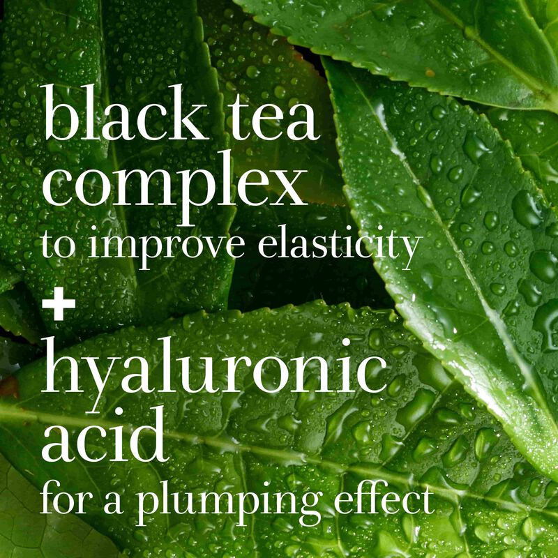 black tea complex to improve elasticity + hyaluronic acid for a plumping effect