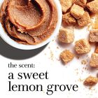 the scent: a sweet lemon grove
