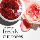 the scent: freshly cut roses