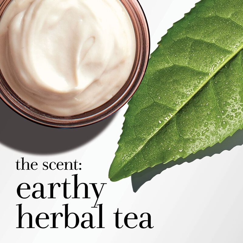 the scent: earthy herbal tea