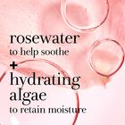 Rosewater to help soother + hydrating algae to retain moisture