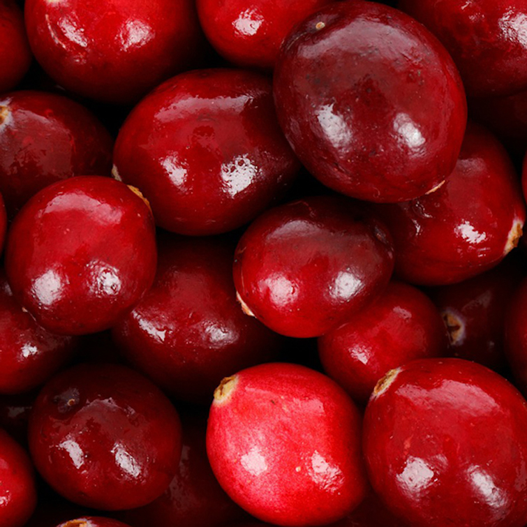 cranberry seed